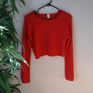 H&M Cropped Red Sweater